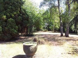 mature parkland